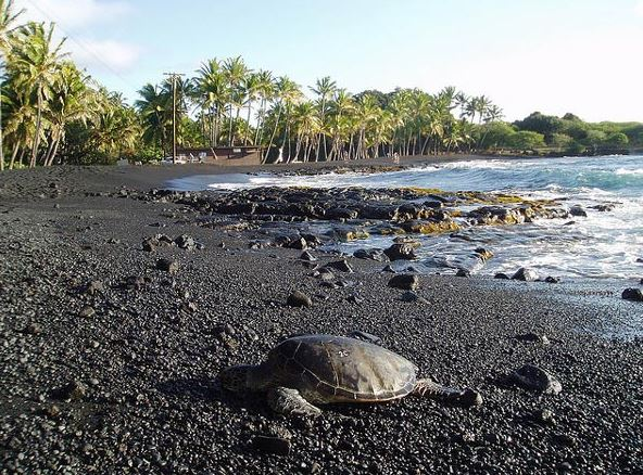 Hawaii Island and the Black Sand Beach